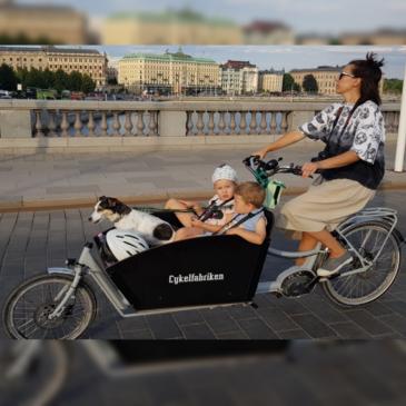 Cykelfabriken Bakfiets XL (REA)